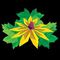 vaste_planten